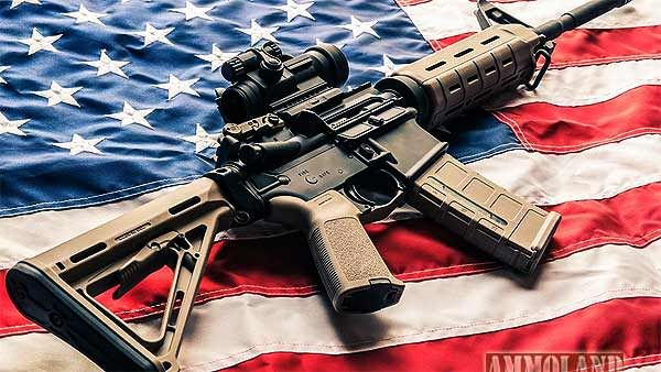 AR15 Rifles ARE Protected by Second Amendment!