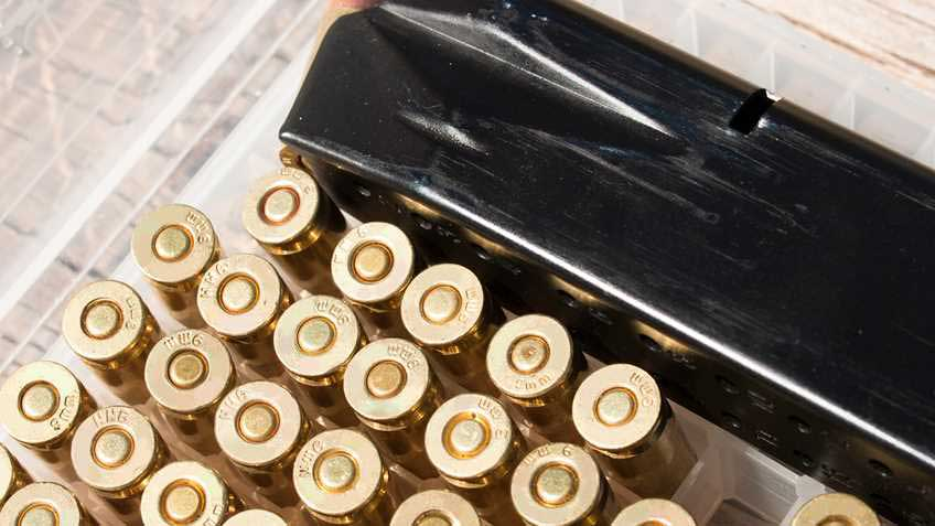 Delaware House Could Hear Mag Ban Today