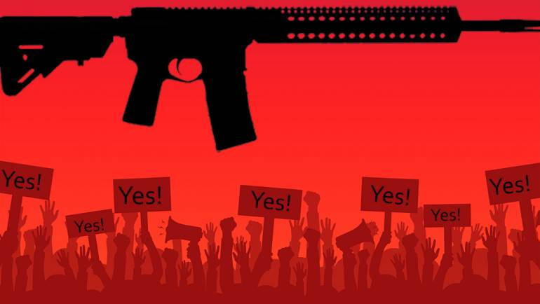 What It Means For Gun Owners?