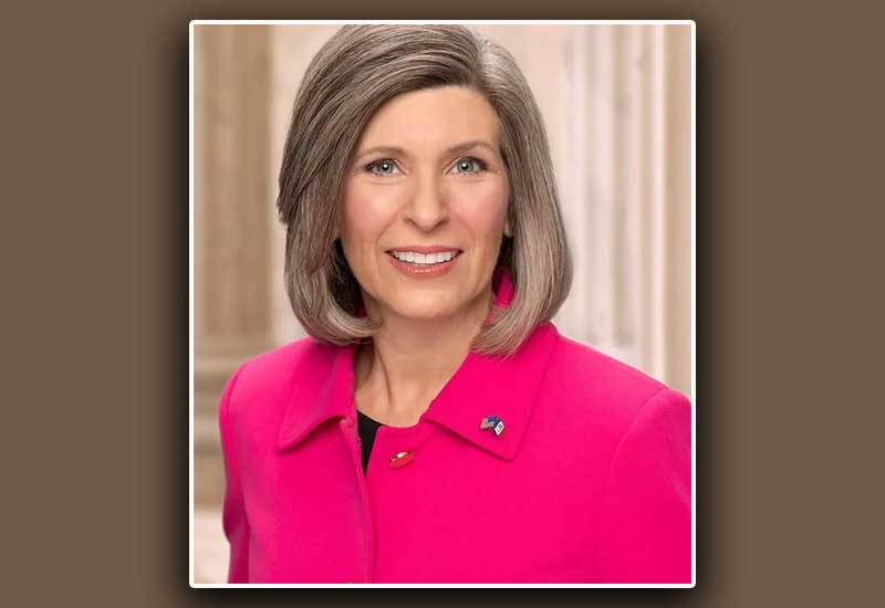 Can Senator Ernst Alter the Violence Against Women Act & Honor the 2A?